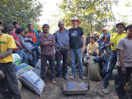 New Arrival: Guatemala Buena Vista