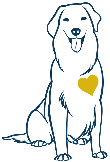 heart, of, gold, canine, dog, trainer, training, connecticut, therapy, service, puppy, obedience, behaviorist, behavior, modification