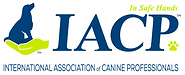 iacp_logo.webp