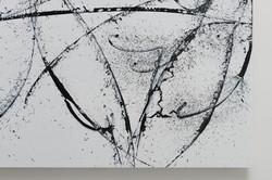 OCTOPUS(detail)