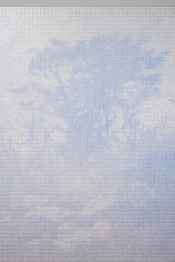 LOG(Hillside tree)detail