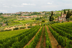 Tuscany-landscape.jpg