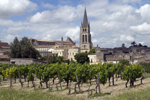 Cycling through Saint-Emilion