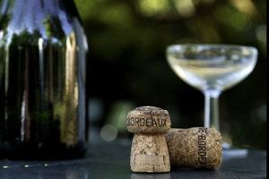 Champagne-dreamstimelarge_8062567.jpg