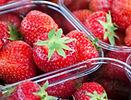 Strawberry market -dreamstimemaximum_135