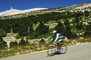 The Active Gourmet cycling in Provence (Vaucluse)
