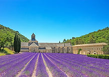 Abbey of Senanque-Gordes-Provence-cyclin