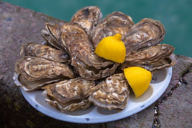 Cancale-oysters.jpg