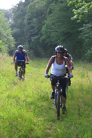 Loire cycling tour through Fontevraud forest