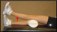 ACL Rehabilitation