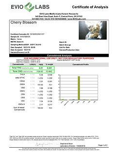 Cherry Blossom-page-001.jpg