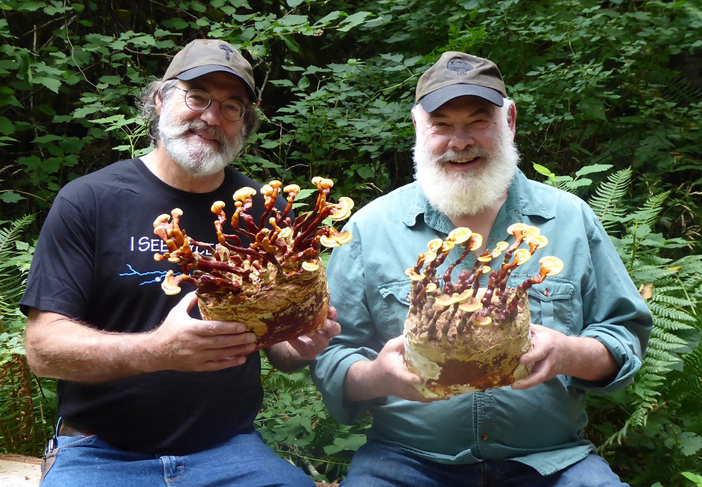 Paul Stamets (Left) and Andrew Weil, MD (Right)