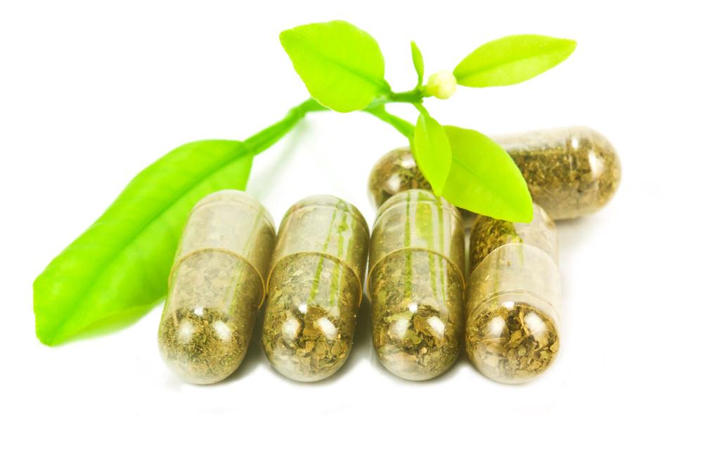 Seaweed Supplementation