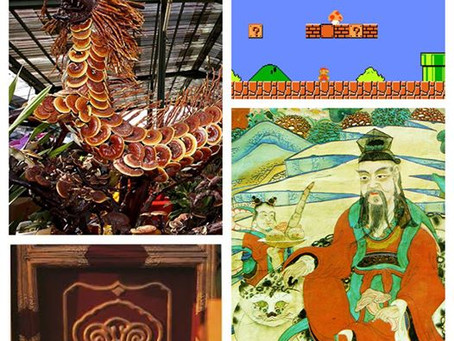 Mushroom of Immortality 靈芝