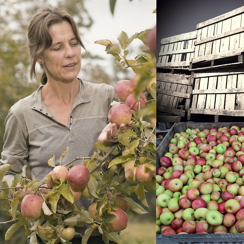 Orchard/Cidery Tour and Tasting