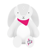 Frenzy Bunny.png