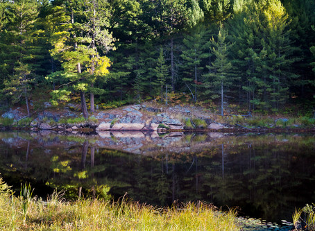 Where to elope in Ontario
