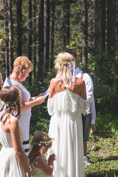 photographers hamilton ontario wedding .