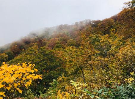 エルク様と行く紅葉の巻機山登山