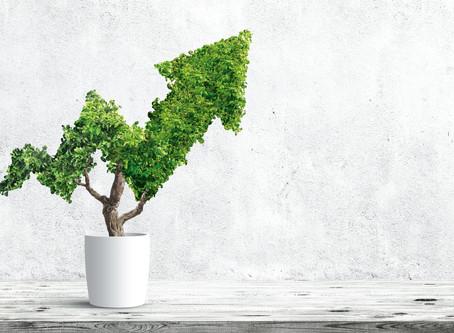 Proteção do meio ambiente e crescimento econômico:aspectos indissociáveis da sustentabilidade