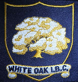 club badge.jpg