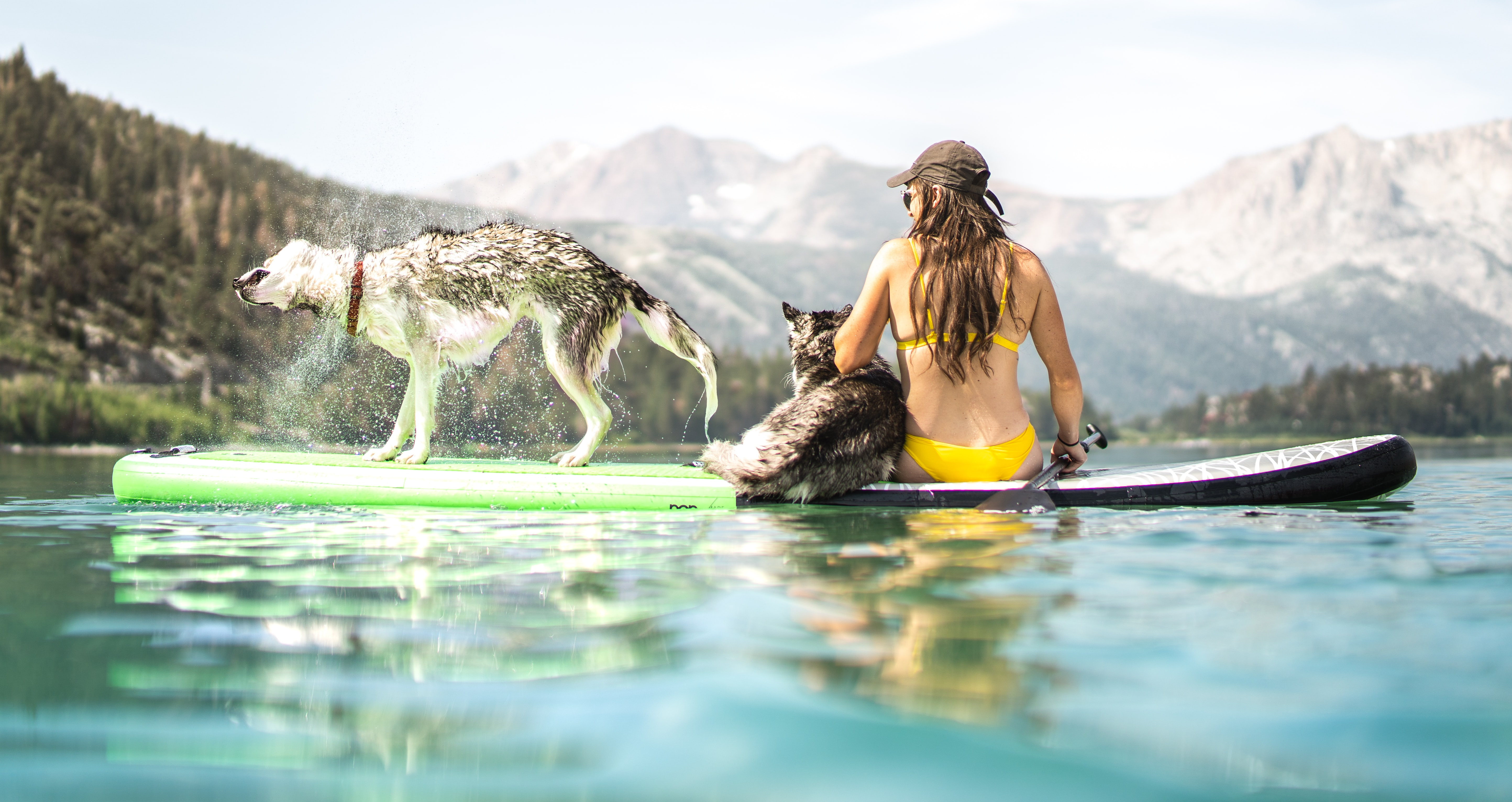 Sup with your Pup: Yoga Class