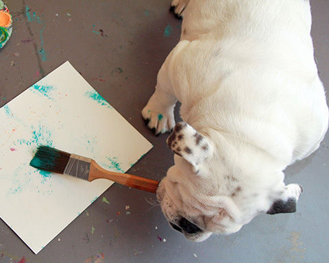 The Painting Bulldog