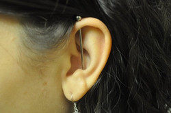 Facebook - Helix to Conch Industrial