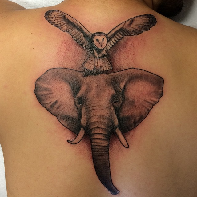 Instagram - #elephant #owl #tattoo #tattoos #ink #inked
