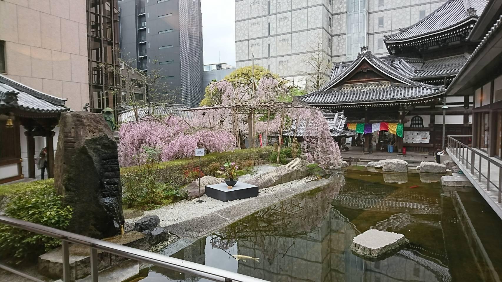 「池坊」京都發祥地紫雲山頂法寺六角堂。