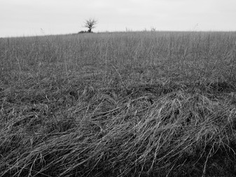 Exploring Kansas - what to photograph!?