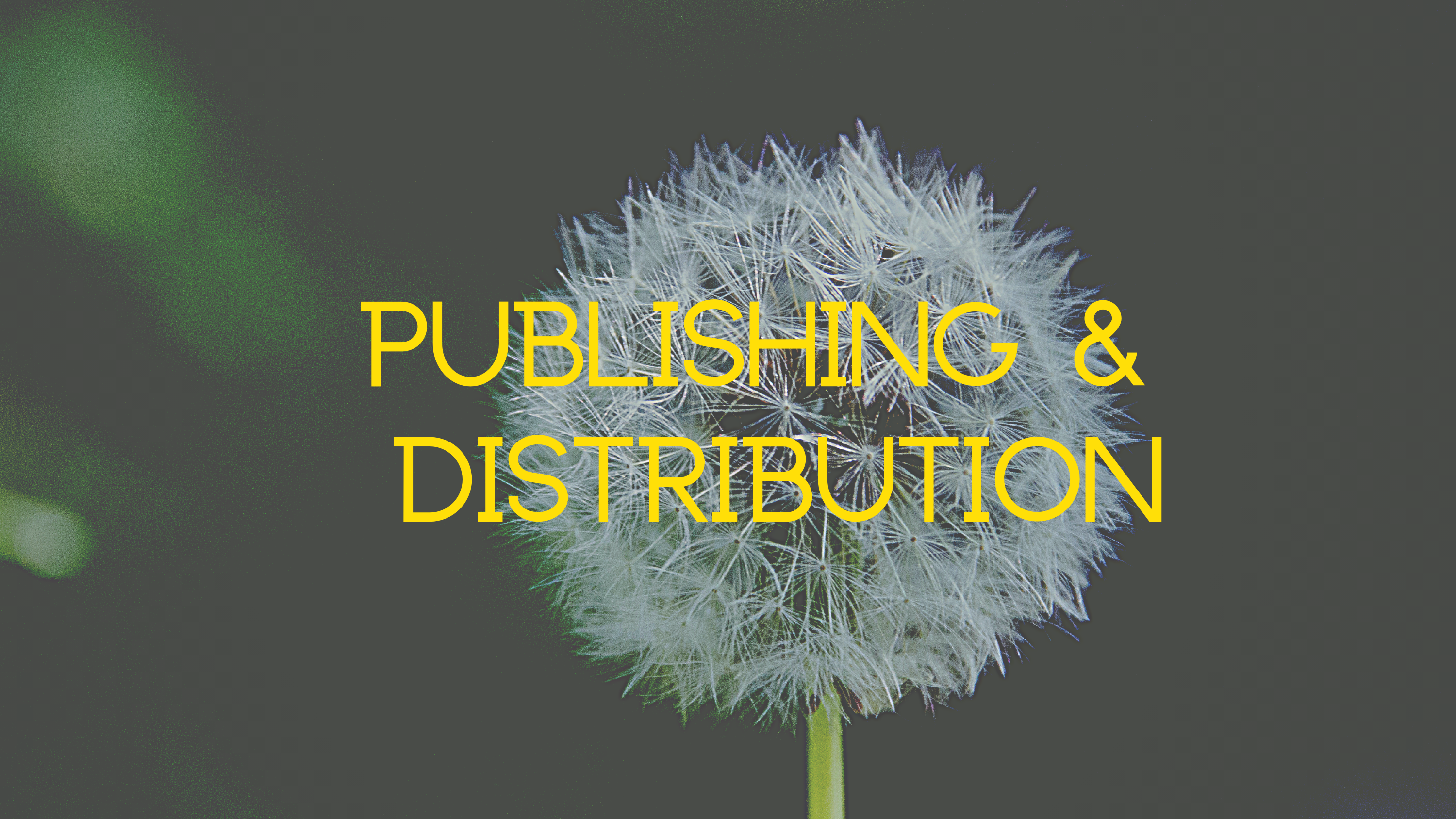 Publishing & Distribution
