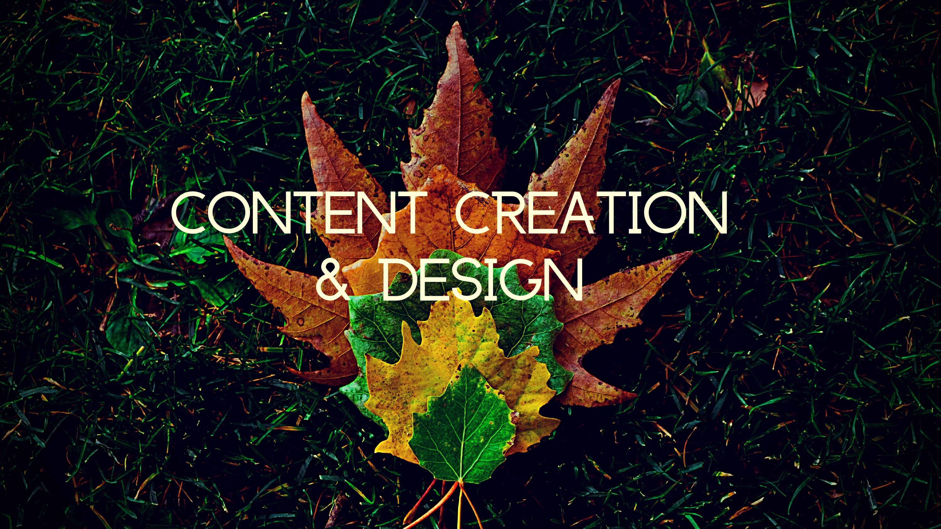 Content Creation & Design