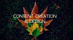 Content Creation & Design
