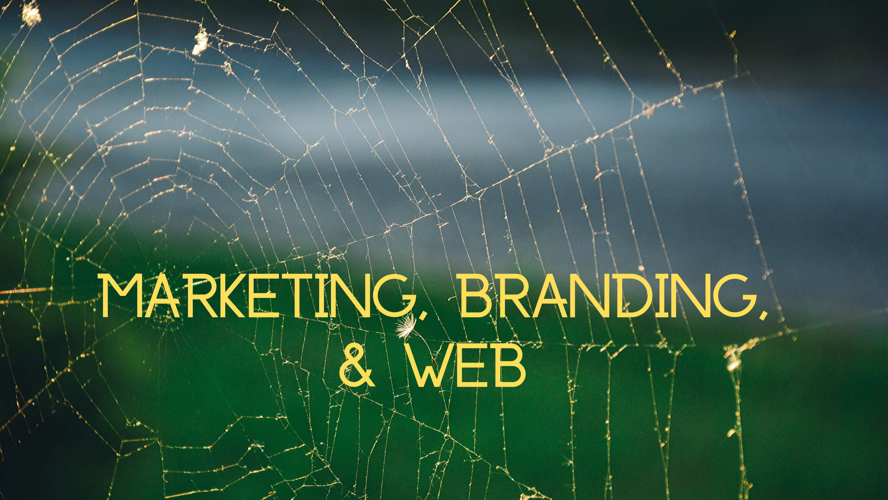 Marketing, Branding, & Web(2)