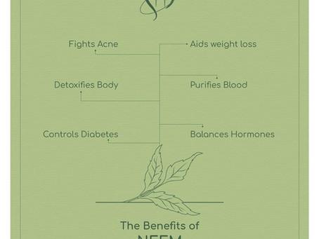 The benefits of Neem
