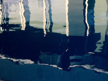 Atrás do vidro