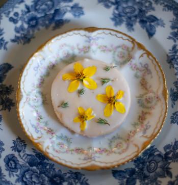 Dessert and Dinner Plate