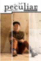 Screen Shot 2018-09-11 at 10.36.33 PM.pn