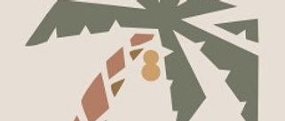 PALM  7-3/4 in. x 7-3/4 in. Cement Tile (4.30 sq. ft. / case)