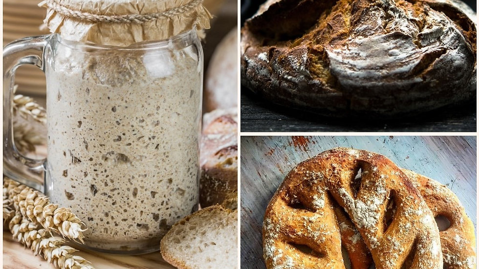 Sourdough Bread Making Experience - 2