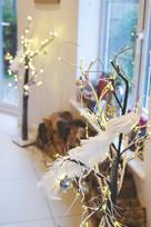 TDH Christmas decor