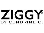Ziggy.png