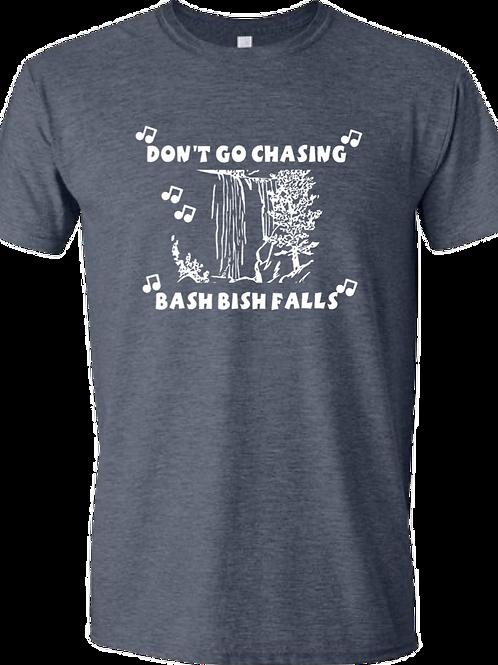 Don't Go Chasing Bash Bish Falls