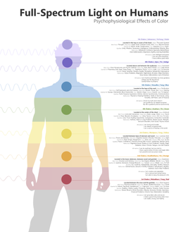 Chakra Body Diagram