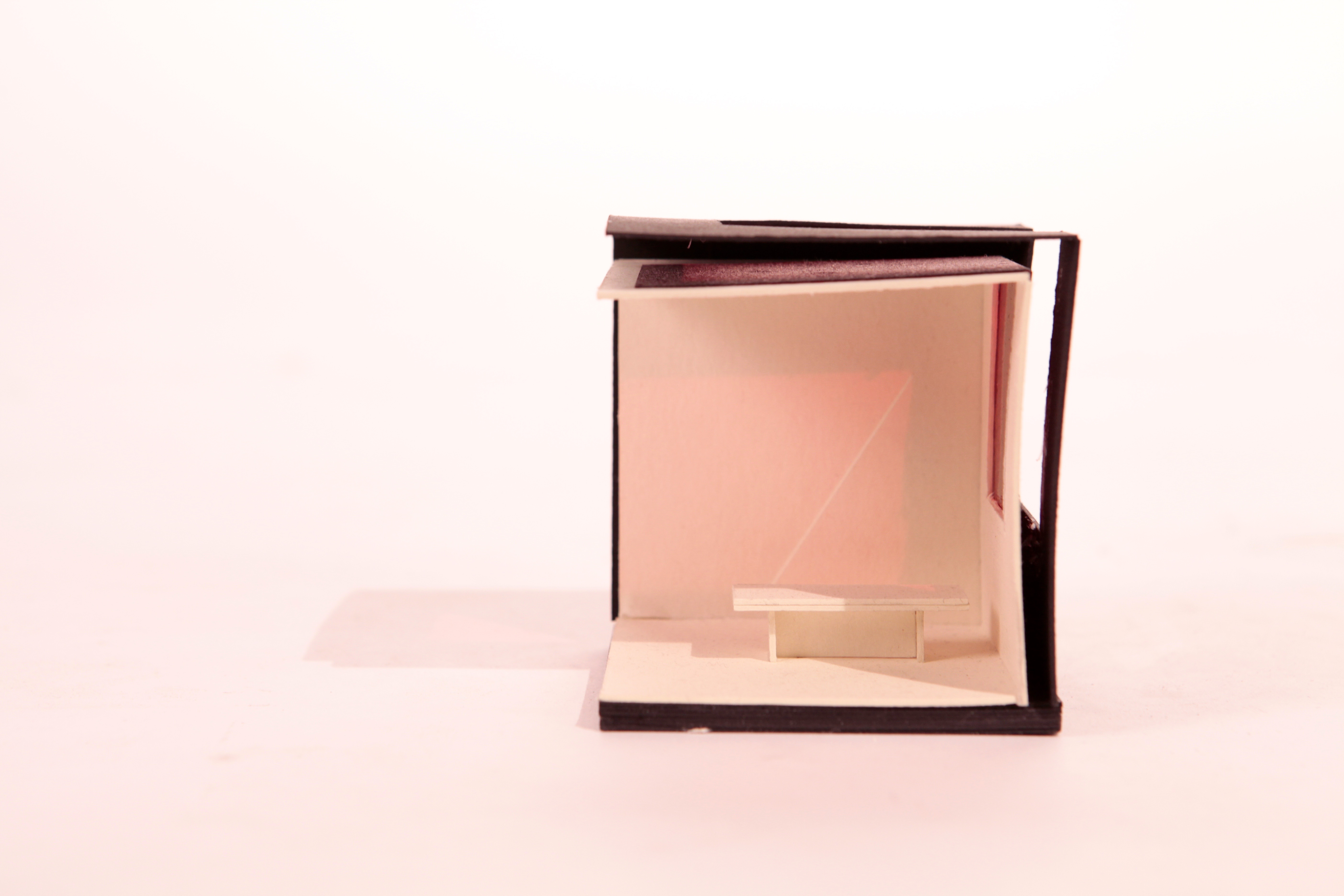 Lighting Condition Model
