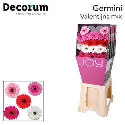 Valentijnsmix