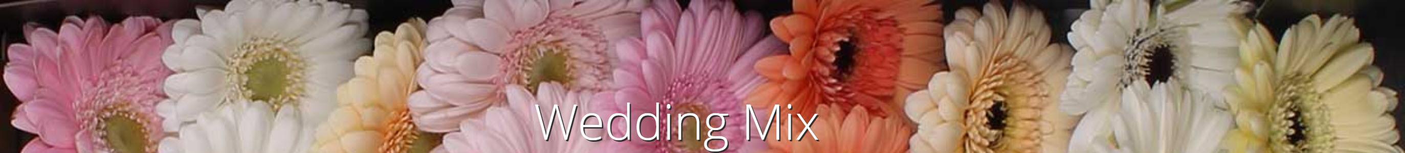 wedding mix jac oudijk