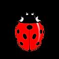 Lieveheersbeestje.png