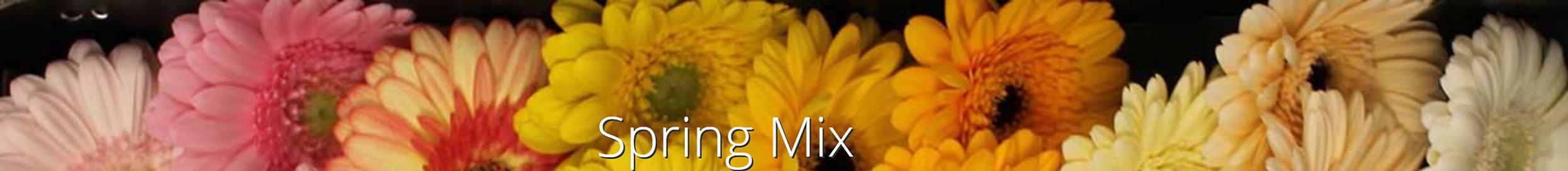 spring mix.jpg